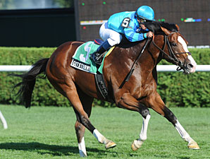Get Stormy wins the 2010 Bernard Baruch.