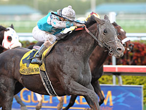 Giant Oak wins the 2011 Donn Handicap.