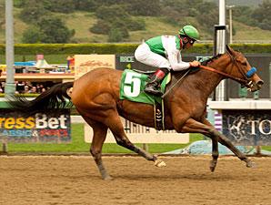 Gilded Gem wins the 2011 Las Flores.