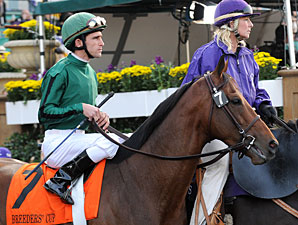 Gio Ponti to Race in 2010