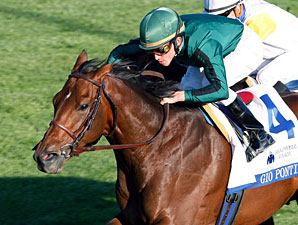 Gio Ponti wins the 2010 Shadwell Turf Mile.
