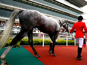 Gold Ship wins the Takarazuka Kinen.