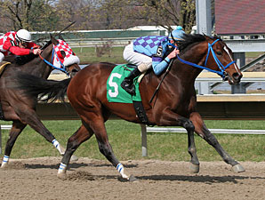 Golddigger's Boy wins the 2011 Lyman Handicap.