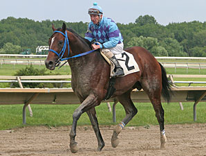 Golddigger's Boy wins the 2011 Donald LeVine Memorial Handicap.