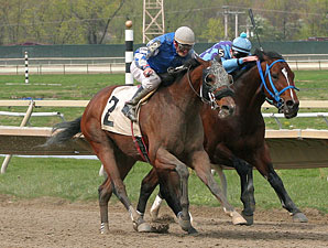 Golddigger's Boy wins the 2012 Lyman Handicap.