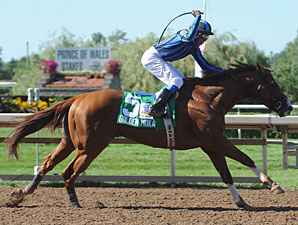 Golden Moka wins the 2010 Prince of Wales.