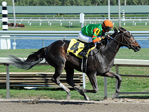 Golden Ticket - Allowance Win January 26, 2013.