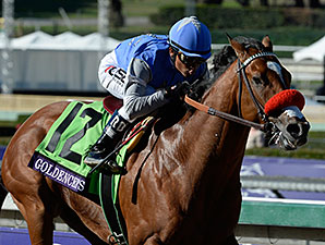 Goldencents wins the 2013 Breeders' Cup Dirt Mile.