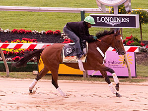 Goldencents - Pimlico, May 11. 2013.