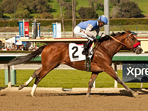 Goldencents wins the 2013 Sham.