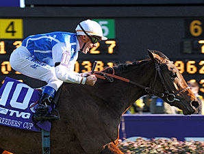 Goldikova wins the 2010 Breeders' Cup Mile.