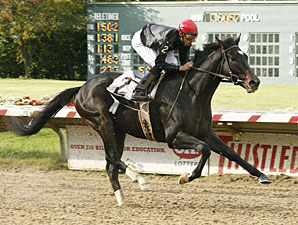 Gone Astray wins the 2009 Ohio Derby.