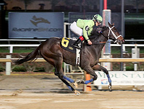 Good Lord wins the 2012 Mountaineer Mile Stakes.
