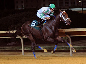 Good Lord wins the 2012 Wild and Wonderful Stakes.