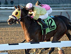 Good Luck Gus wins the Damon Runyon Stakes.