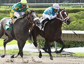 Good Morning Diva wins the 2012 Calder Derby.