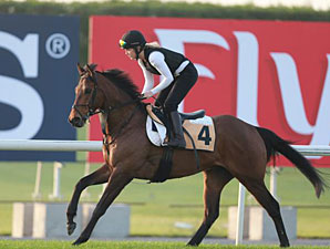 Gordon Lord Byron - Dubai, 03/27/2013