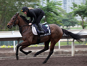 Gordon Lord Byron - Hong Kong December 2012