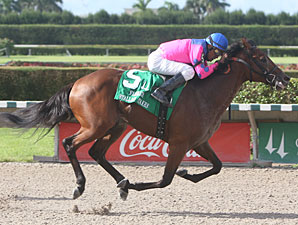 Gourmet Dinner wins the 2010 Affirmed Division of the Florida Stallion Stakes.