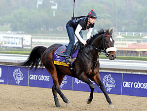 Grace Hall - Breeders' Cup 2012