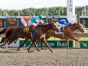 Gran Estreno wins the 2010 Washington Park Handicap.