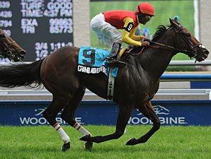 Grand Adventure wins the 2010 King Edward Stakes.