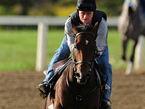 Grand Adventure - Woodbine September 16, 2011.