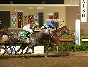 Grand Contender wins the 2014 Texas Mile.