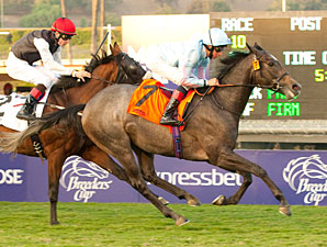 Grandeur wins the 2012 Twilight Derby.