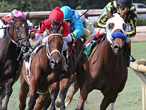 Grandma's Rules wins the 2013 River Cities Stakes.