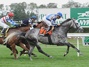 Grassy wins the 2011 Bowling Green.