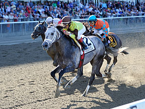 Graydar wins the 2013 Kelso.