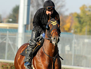 Great Attack at Churchill Downs on Oct. 29, 2011.