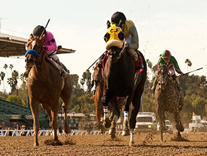 Great Hot wins the 2013 Santa Maria Stakes.