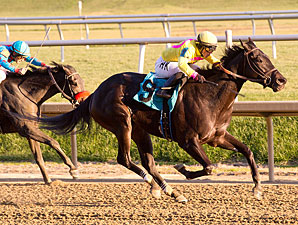 Greed and Fear wins the 2012 Safely Kept Stakes.