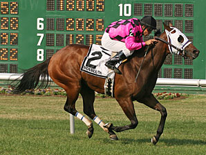 Greeley's Rocket wins the 2010 Crank It Up Stakes.