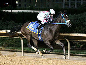 Greenway Court wins the 2013 West Virginia Dash for Cash Breeders' Classic Stakes.