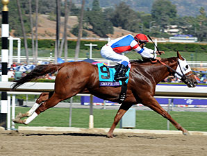 Groupie Doll in the Breeders' Cup Filly & Mare Sprint.