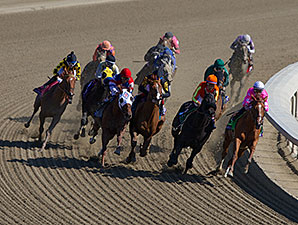 Groupie Doll and the field of the Breeders' Cup F&M Sprint.