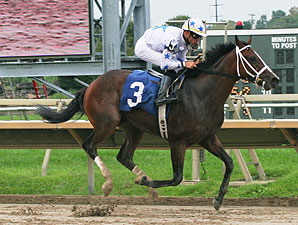 Gunfighter wins the 2011 Roanoke Stakes.