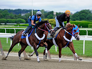 Guyana Star Dweej works towards the Belmont Stakes.