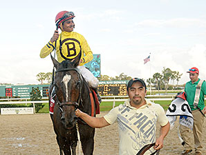 Guys Reward wins the 2014 Tampa Bay Stakes.
