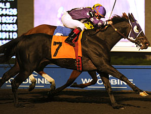 Gypsy Ring wins the 2011 Overskate Stakes.