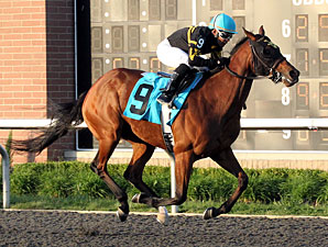 Gypsy Robin wins the 2012 Inaugural Stakes.
