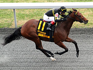 Gypsy Robin wins the 2012 Lexus Raven Run.