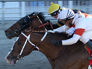 Shaun Bridgmohan aboard Hallway edges Desert Wheat with Corey Lanerie up by a nose to win the Dixie Poker Ace Stakes at Fair Grounds in New Orleans.