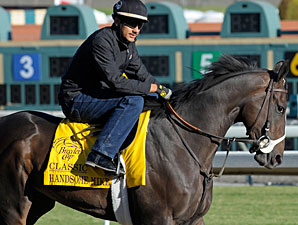 Handsome Mike preps for the Breeders' Cup 10/28/2012.