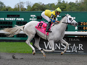 Hansen wins the 2011 Kentucky Cup Juvenile.