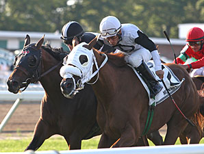 Hard Enough wins the 2013 Restoration Stakes.
