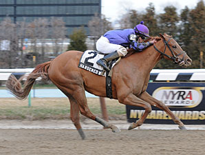 "Hardened Wildcat wins the 2012 Fred ""Cappy"" Capossela Stakes."